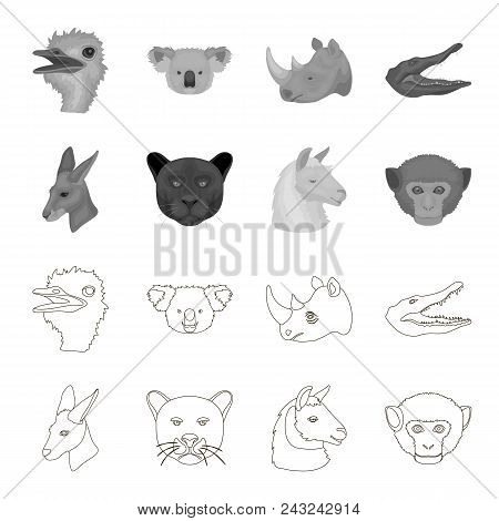 Kangaroos, Llama, Monkey, Panther, Realistic Animals Set Collection Icons In Outline, Monochrome Sty