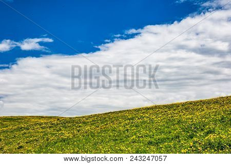 Some Beautiful Grassland With Blue Cloudy Sky In The Background