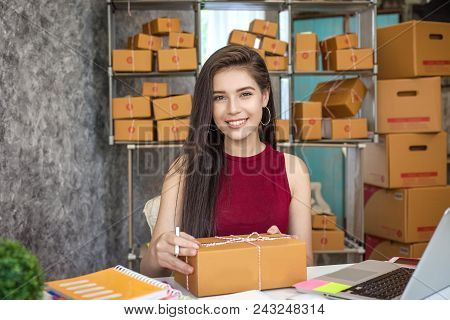 Business Woman Entrepreneurial Success . Sales Online Parcel Delivery