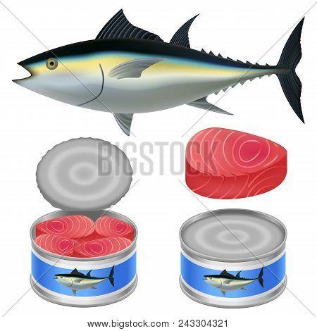 Tuna Fish Can Steak Mockup Set. Realistic Illustration Of 4 Tuna Fish Can Steak Mockups For Web