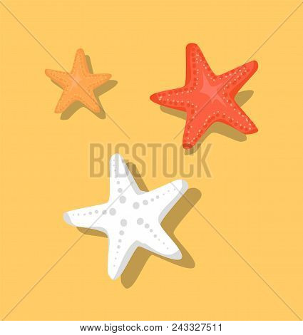 Starfish Or Sea Stars Star-shaped Echinoderms Isolated On Beige Sand Background. Set Of Starfish Col