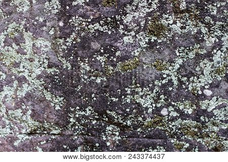 Mossy Grey Stone Texture Photo. Natural Stone Background. Weathered Rock Relief. Old Building Stone