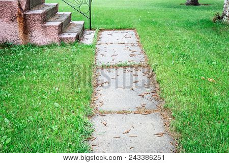 Horizontal Image Of An Old Worn Out And Broken Cement Side Walk Surrounded By Over Grown Green Grass