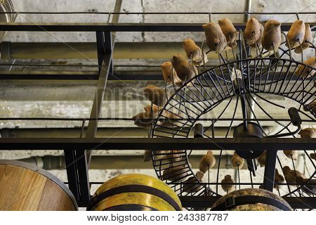Vintage Chandelier And Group Of Bird Wood Carving, Stock Photo