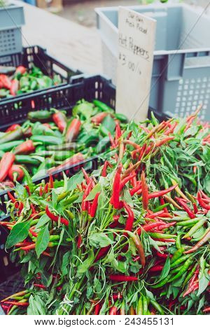 Hot Red Peppers At The Summer Outdoor Farmers Market. Healthy And Local Food And Community Conceptat