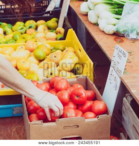 Tomatoes At The Summer Outdoor Farmers Market. Healthy And Local Food And Community Concept