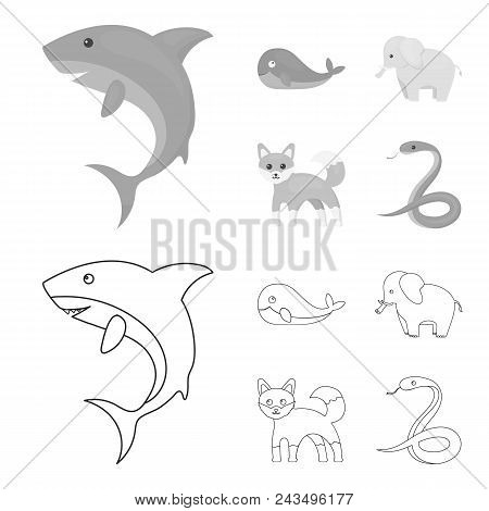Whale, Elephant, Snake, Fox.animal Set Collection Icons In Outline, Monochrome Style Vector Symbol S