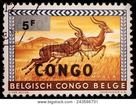 Luga, Russia - January 23, 2018: A Stamp Printed By Congo Shows Impala - A Medium-sized Antelope Fou