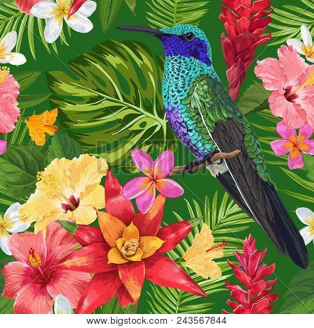 Floral Tropical Seamless Pattern With Exotic Flowers And Humming Bird. Blooming Flowers, Birds And P
