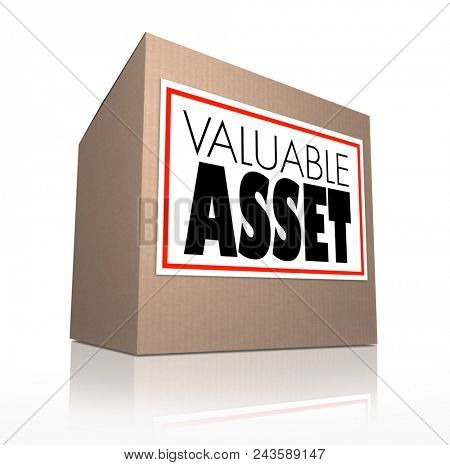 Valuable Asset Cardboard Box Special Contents Possessions Words 3d Illustraion