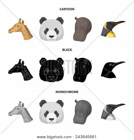 Panda, Giraffe, Hippopotamus, Penguin, Realistic Animals Set Collection Icons In Cartoon, Black, Mon