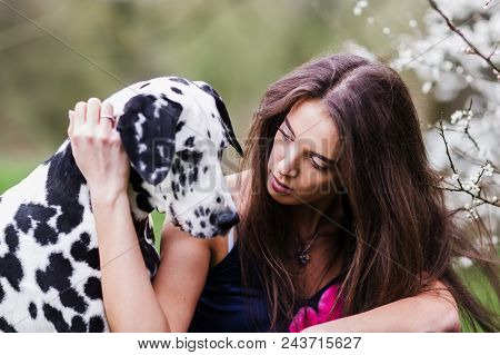 picture of a young woman who fondles her Dalmatian dog poster