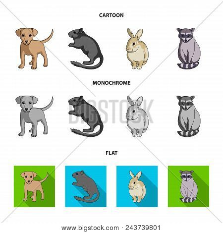 Puppy, Rodent, Rabbit And Other Animal Species.animals Set Collection Icons In Cartoon, Flat, Monoch