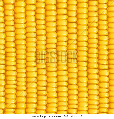 Corn Cob. Organic Food Seamless Pattern. Corncob Natural Meal. Ripe Maize. Product For Cooking Popco