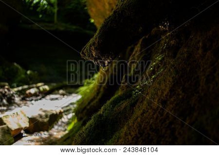 Moss Growing In Cave. Closeup Of Clean Water Dripping From Cave Wall. Lush Green Moss On Cave Wall