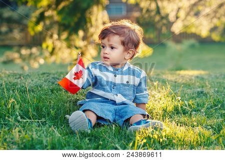Portrait Of Little White Caucasian Baby Boy Holding Canadian Flag With Red Maple Leaf. Toddler Celeb