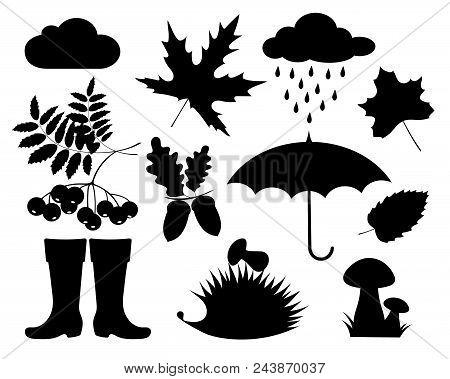 Autumn. Set The Autumn Black Silhouettes. Set Of Autumn Leaves, Berries, Nuts, Mushrooms, Cloud, Rai