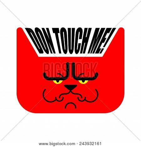 Dont touch me. Grumpy cat. Vector illustration poster