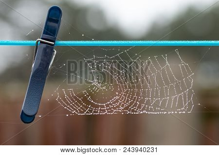 Spider's Web With Beads Of Dew On Clothes Line.