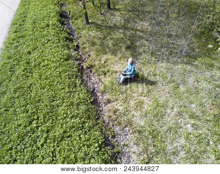 Drone View On The Young Woman Reads The Book Sitting On A Stub In The Wood At The Road At The Beginn