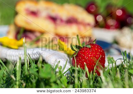 Detail Of Fresh Red Strawberry In Front Of Cherry Cake On White Towel In Grass