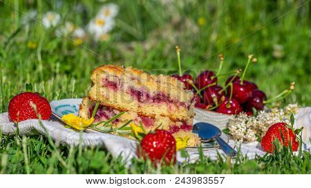 Portion Of Cherry Cake With Ripe Strawberries Around And Yellow Blooms