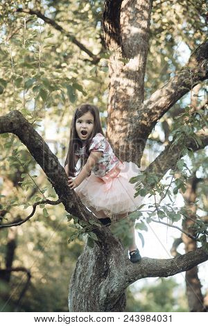 Childhood, Youth, Growth. Child With Surprised Face On Tree Branch, Childhood. Kid Fashion Beautysty