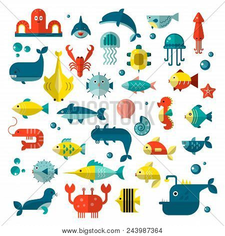 Set Of Vector Flat Sealife Elements, Plants And Sea Animals - Shark, Jellyfish, Octopus And Others.
