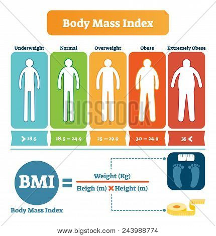 Body Mass Index Table With Bmi Formula Example. Health Care And Fitness Informative Poster. Human Si