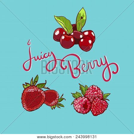 Juicy Berry Lettering Hand Drawn Vector Set. Berry Colorful Marker Illustration. Berries Engraving D