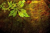 grunge abstract background with green leaf pattern poster