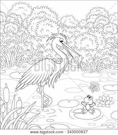 Big Heron And A Small Frog On A Lake Among Cane, Grass And Bushes Of A Summer Meadow, Black And Whit