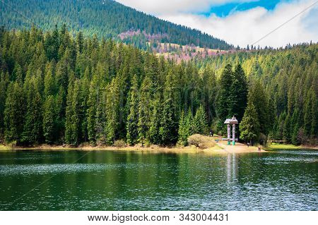 Lake Among The Coniferous Forest In Mountains. Beautiful Nature Scenery Of Synevyr National Park In