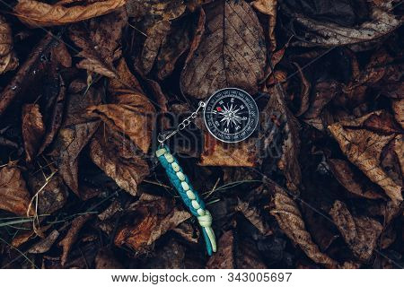Compass On Leaves In The Forest, Metaphor. Bushcraft Equipment Survival Scouting Concept