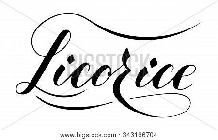 Vector Hand Written Licorice Text Isolated On White Background. Kitchen Healthy Herbs And Spices For
