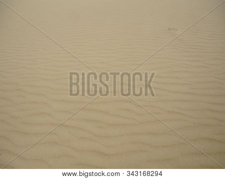 Sand Dunes Near The Village Of Seneca In Kazakhstan.