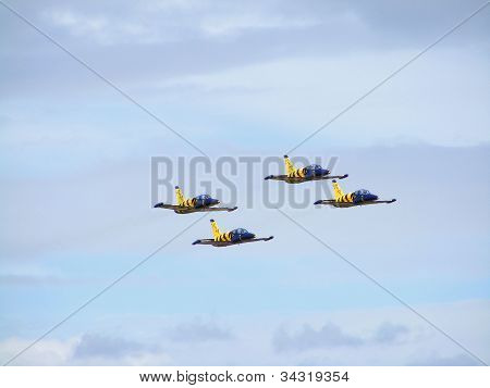 Aerobatic team Baltic Bees
