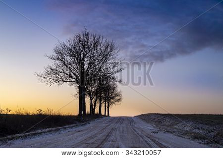 Trees Silhouetted Against An Orange Sky At Twilight In A Rural Winter Sunset With Receding Road With