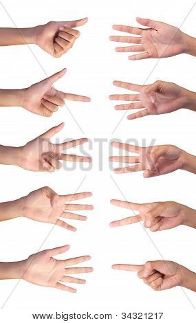 Set Image Of Counting Woman's Right Hands Finger Number (1 To 10 )