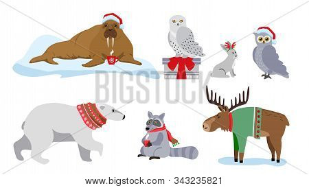 Ute Winter Animals With Presents, Santa Hats And Scarves. Merry Christmas And Happy New Year