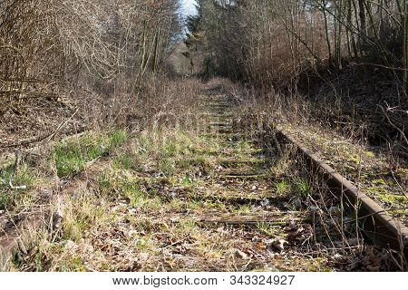 Old Railroad Tracks Overgrown With Grass Nad Moss