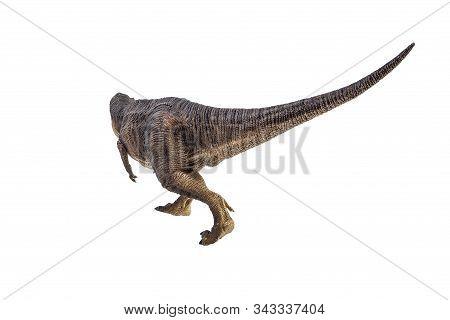Tyrannosaurus T-rex ,dinosaur On White Background