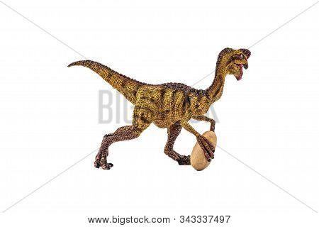 Oviraptor  Dinosaur On White Background