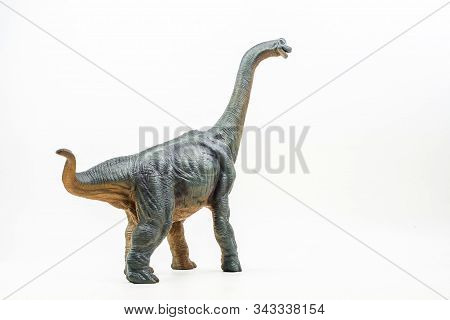 Baryonyx  ,dinosaur On White Background   Isolated Background