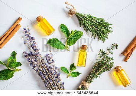 Essential Oil In Glass Bottles. Thyme, Mint, Rosemary And Lavender Essential Oils.