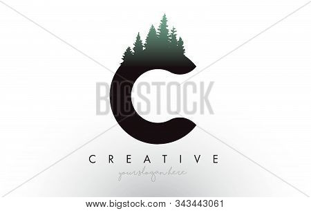 Creative C Letter Logo Idea With Pine Forest Trees. Letter C Design With Pine Tree On Topvector Illu
