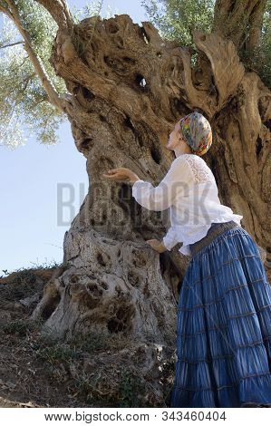 Woman In A White Blouse, A Long Skirt And A Turban. Woman Near An Old Olive Tree. The Valle Dei Temp
