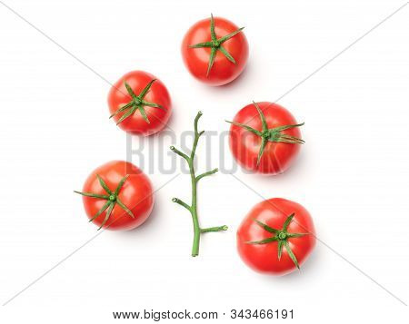 Tomato Branch Isolated On White Background. Top View