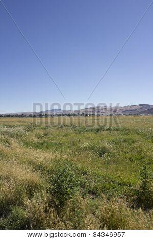 Agriculture Pasture Crop Irrigation