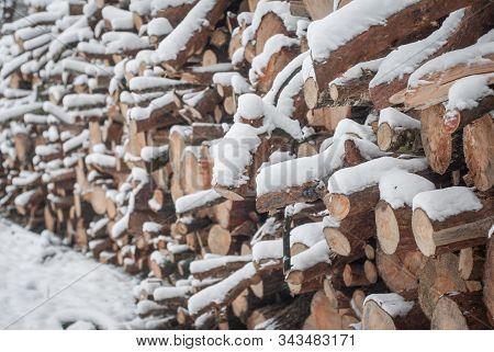 Snow Log Stack Lumber In Winter. Woodpile Of Pine